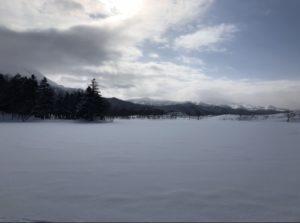 【北海道】シンラ冬の知床五湖スノーシューイングに参加してきた!口コミ&レビュー