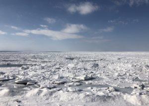 【北海道】知床でシンラの流氷ウォークに参加してきた!感想:「雄大な自然にただただ感動」
